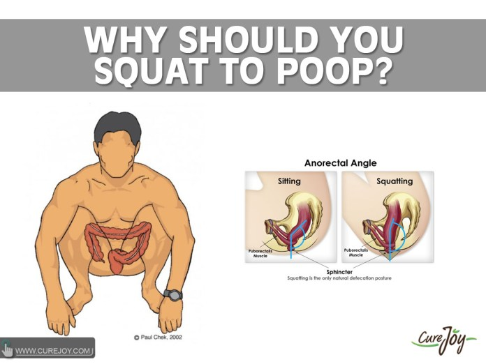 Why-Should-You-Squat-To-Poop (1)