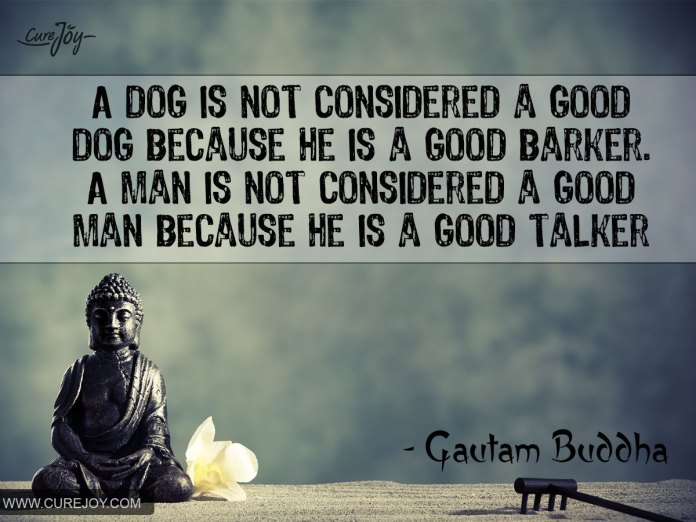 a_dog_is_not_considered