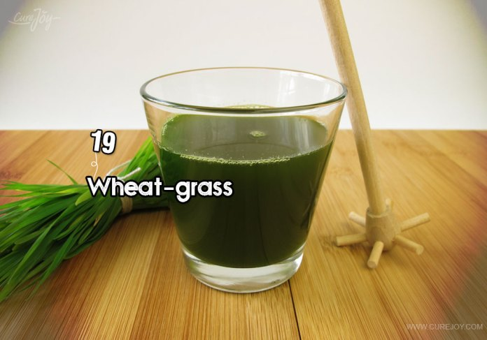 19-wheat-grass