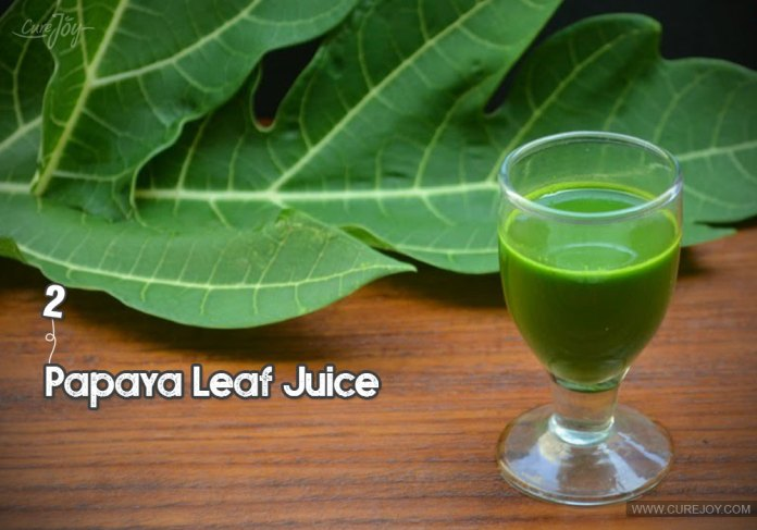 2-papaya-leaf-juice