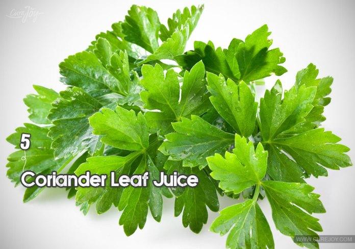 5-coriander-leaf-juice