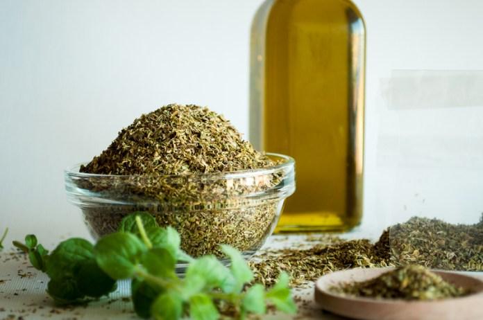 use oregano oil to kill intestinal parasites