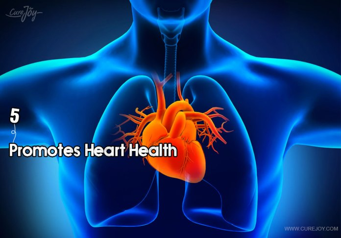 5-promotes-heart-health