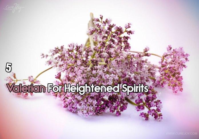 5-valerian-for-heightened-spirits