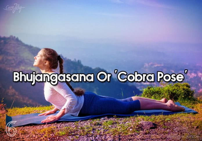 6-bhujangasana-or-cobra-pose