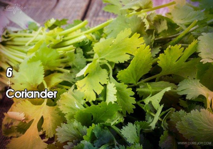 6-coriander