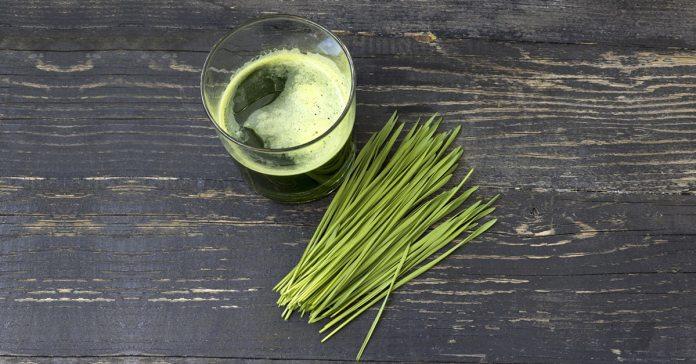 health benefits of wheatgrass