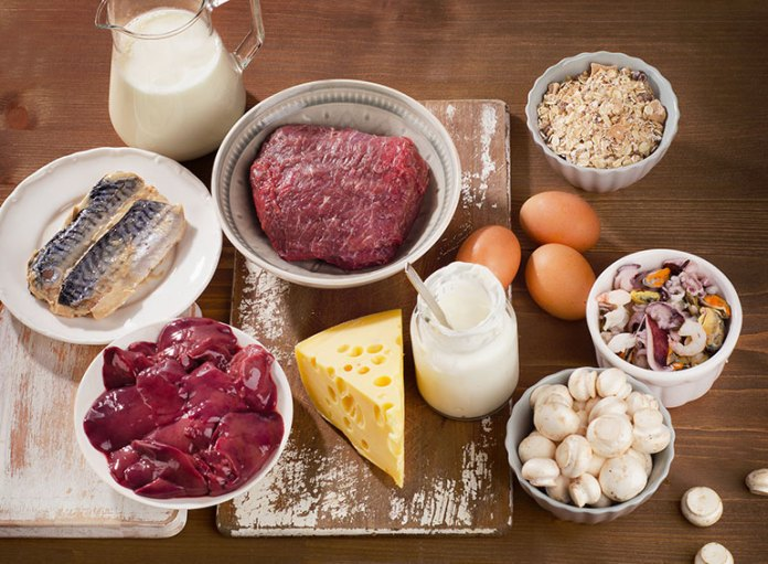 OCD Foods; Vitamin B-12