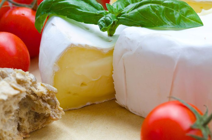 saturated-fats: what cheese does to your body