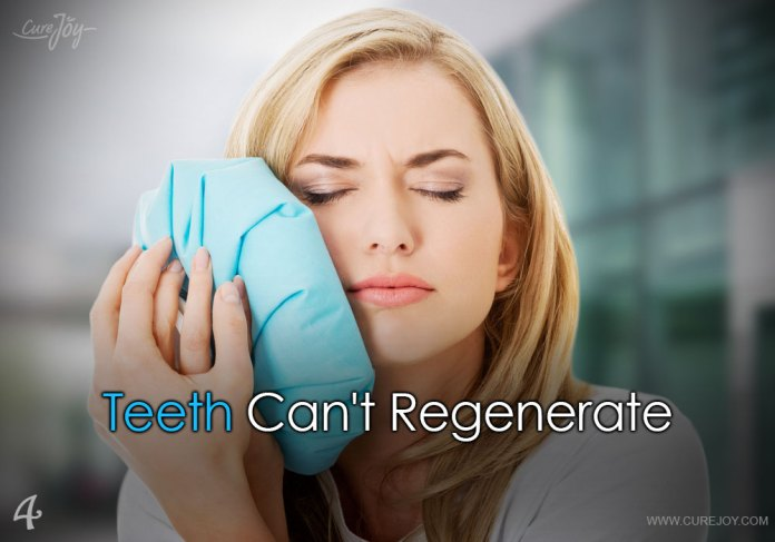 4-teeth-cant-regenerate