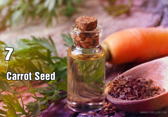 7-carrot-seed