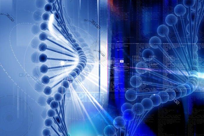 Chromosomal Defects: Causes of Premature Menopause