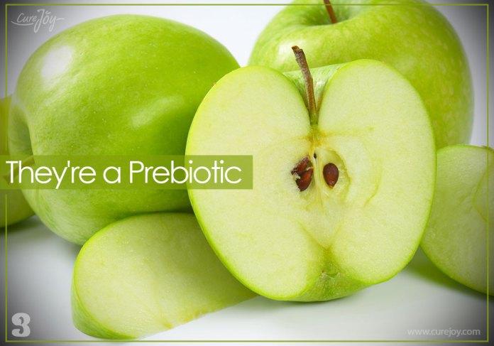 3-theyre-a-prebiotic
