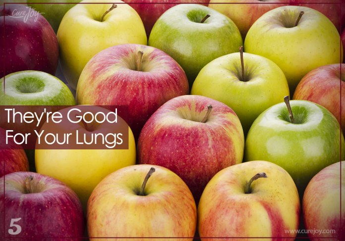 5-theyre-good-for-your-lungs