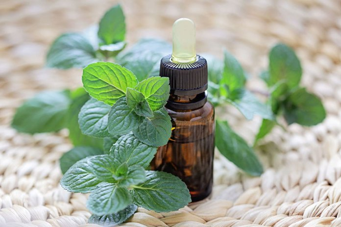 Spearmint essential oil is even safe enough to be used for nausea from chemotherapy