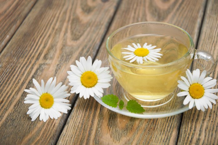Chamomile Tea prevents progress of hyperglycemia and diabetic complications