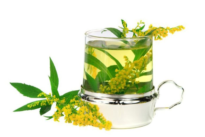 Another natural herb for kidney stones is goldenrod.
