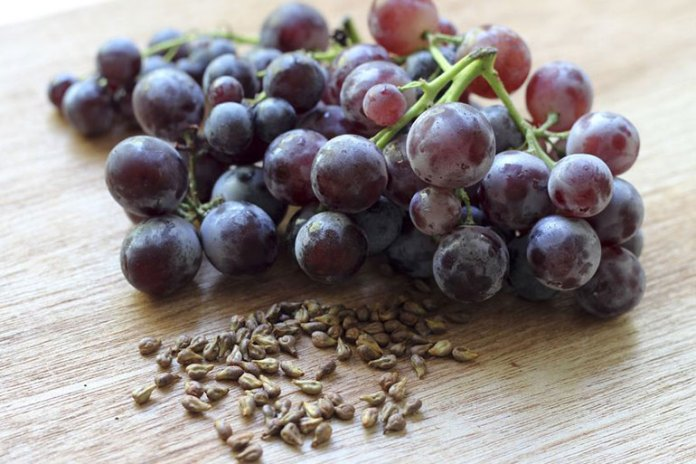 Grape Seed Helps Get Rid Of Cellulite
