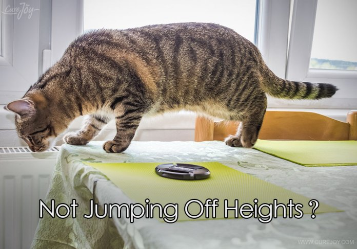 4-not-jumping-off-heights