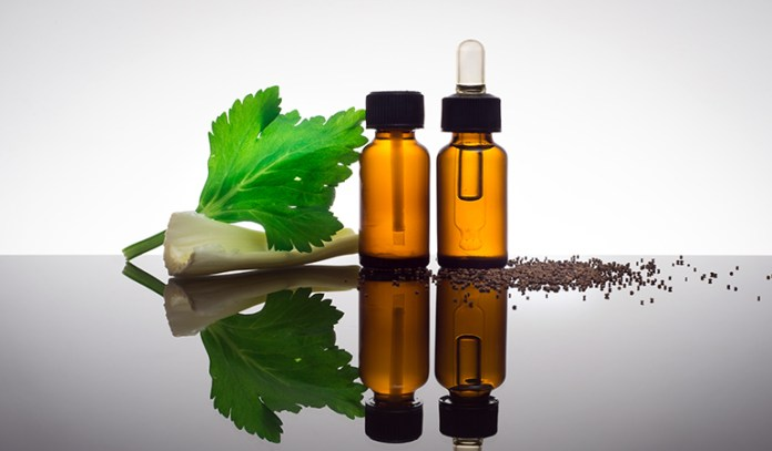 Celery Seed Essential Oil That Reduce Cellulite Naturally