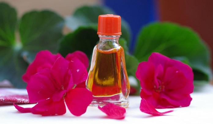 Geranium Essential Oil That Reduce Cellulite Naturally