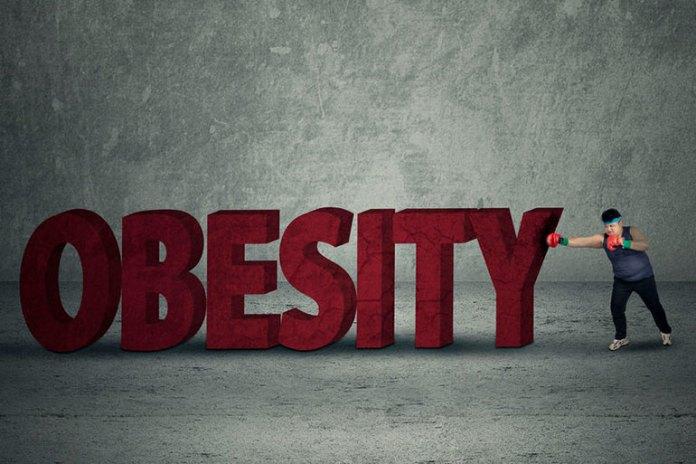 Fights Obesity