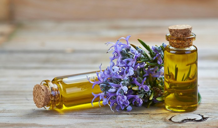 Rosemary Essential Oil That Reduce Cellulite Naturally