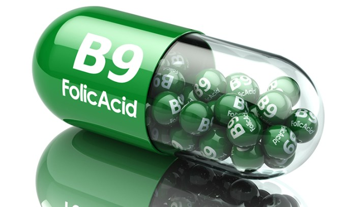 Vitamin B9_Nutrients That Liver Contains