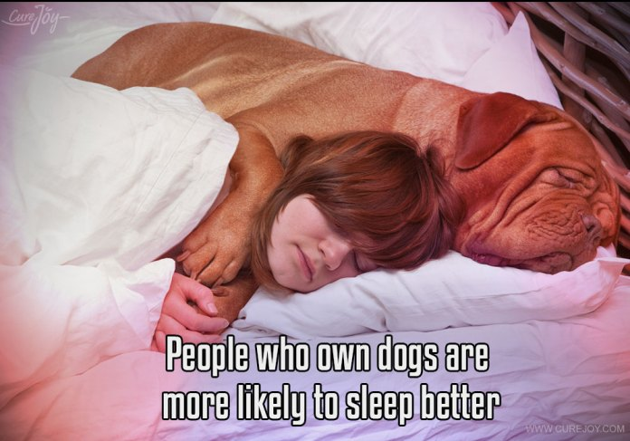 1-people-who-own-dogs-are-more-likely-to-sleep-better