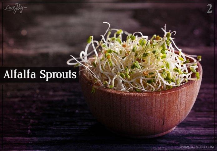 2-alfalfa-sprouts