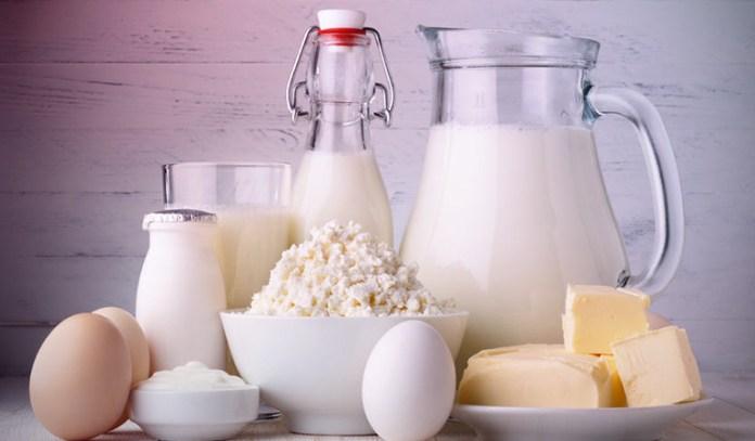 Give Greek Yogurt for boosting brain development