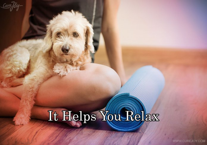 5-it-helps-you-relax