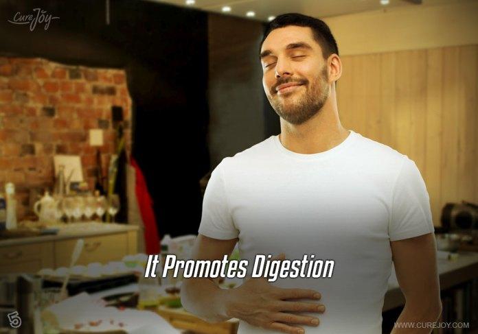 5-it-promotes-digestion