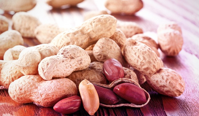 Peanuts Contain Most Essential Brain Nutrients