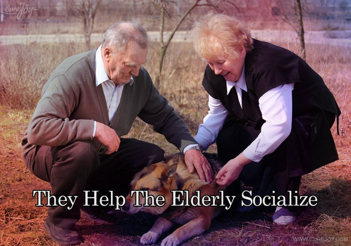 8-they-help-the-elderly-socialize
