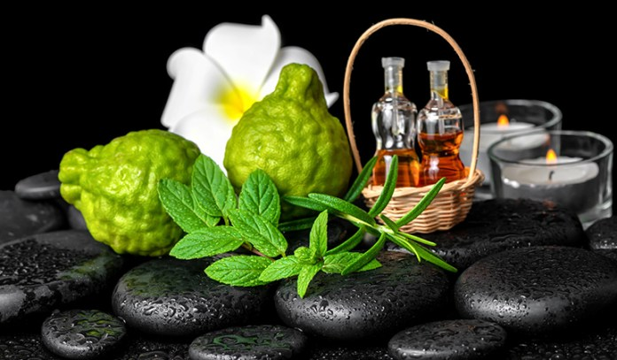 Bergamot oil-used in aromatherapy for weight loss, regulates cravings and boosts mood