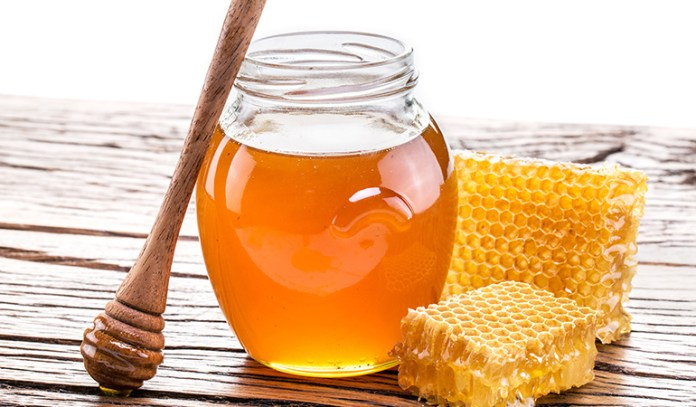 Honey is an effective treatment for cactus stings