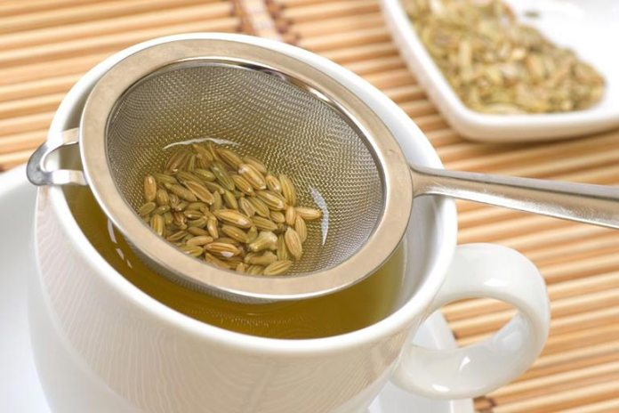 Fennel tea helps cure hangover body aches
