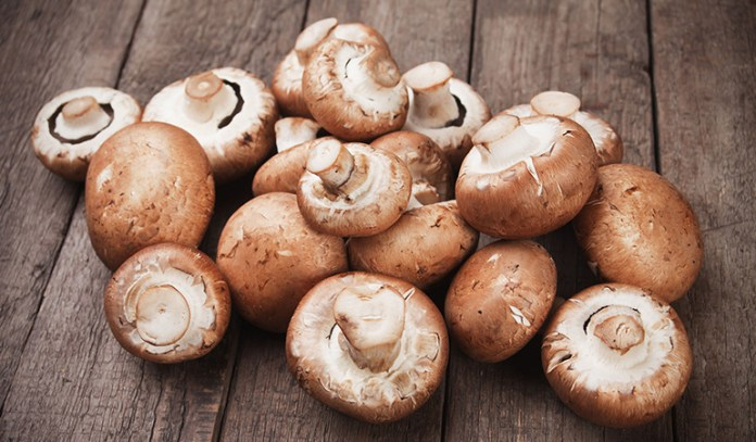 hormone balancing foods Portabello Mushrooms