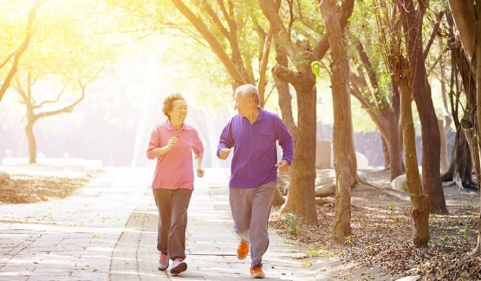 Regular exercise can prevent brain cell degeneration