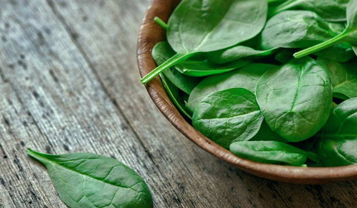 Spinach Boosts Your Brain Health