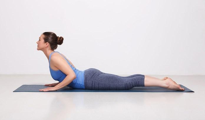 Cobra stretch increases flexibility