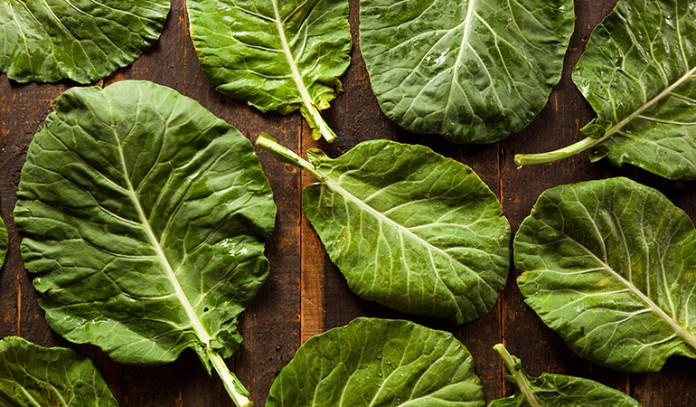 Healthiest Vegetables on Earth Collard Greens
