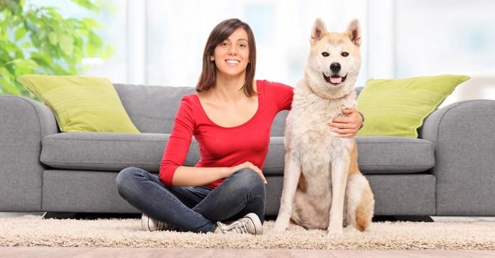 Advantages Of Having A Pet