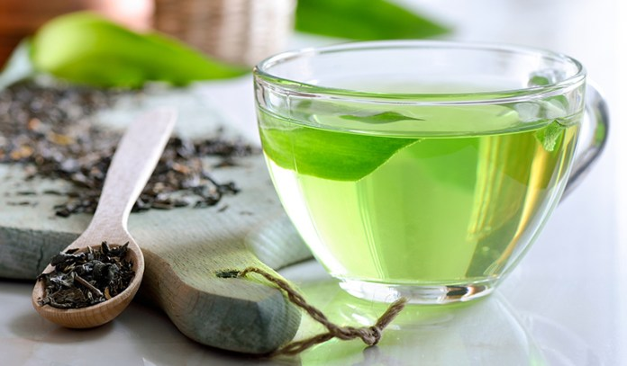 green tea for receding gums