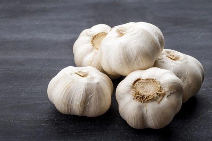 Garlic has cancer-fighting properties