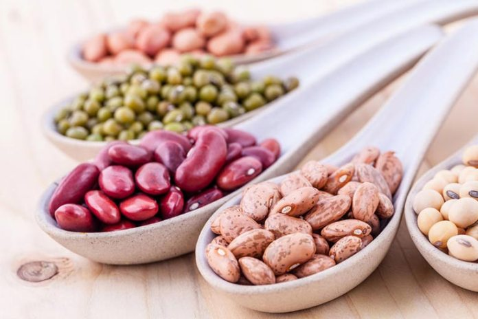 Beans Contain Protein And Is Good For Weight Loss