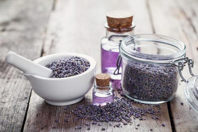 Lavender acts as a toner