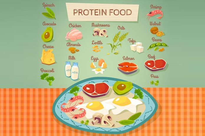 Protein Makes You Feel Satisfied With Less Food