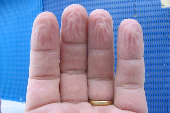 pruney fingers give a better grip on wet surfaces